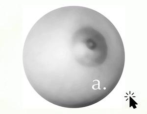 fons-blanc (3)